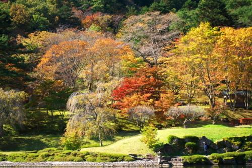 古峰神社の紅葉2_a0263109_15060770.jpg