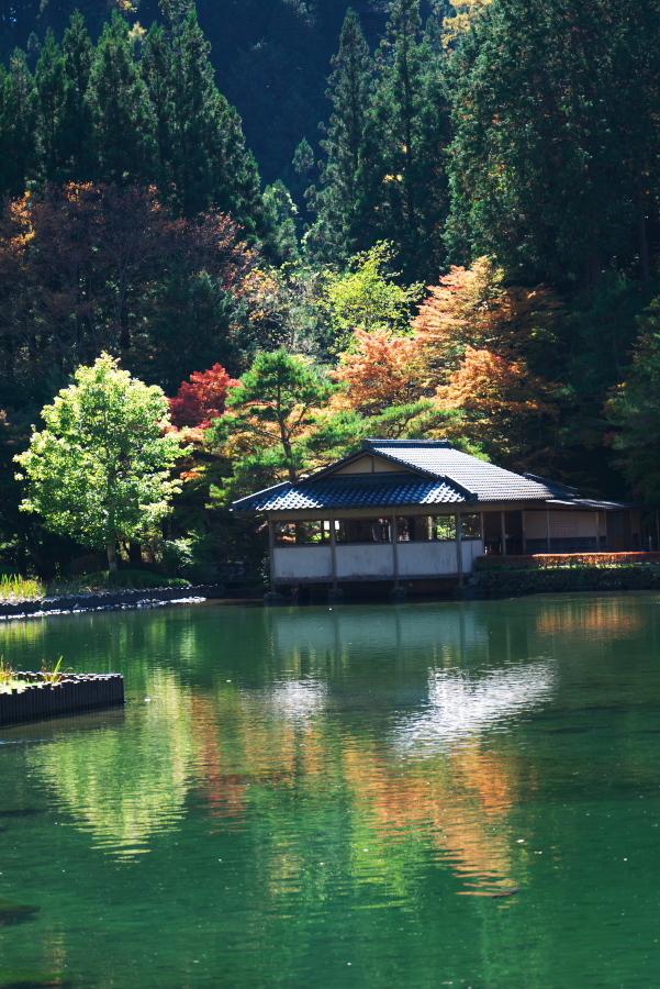 古峰神社の紅葉2_a0263109_15064574.jpg