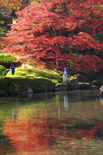 古峰神社の紅葉2_a0263109_15064665.jpg