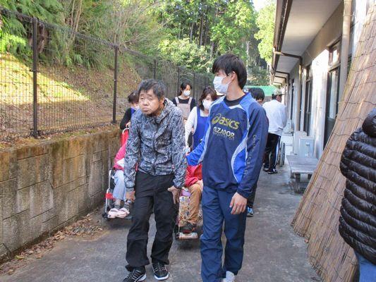 11/12 朝の散歩_a0154110_16301688.jpg