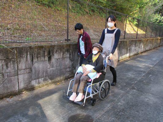 11/12 朝の散歩_a0154110_16301786.jpg