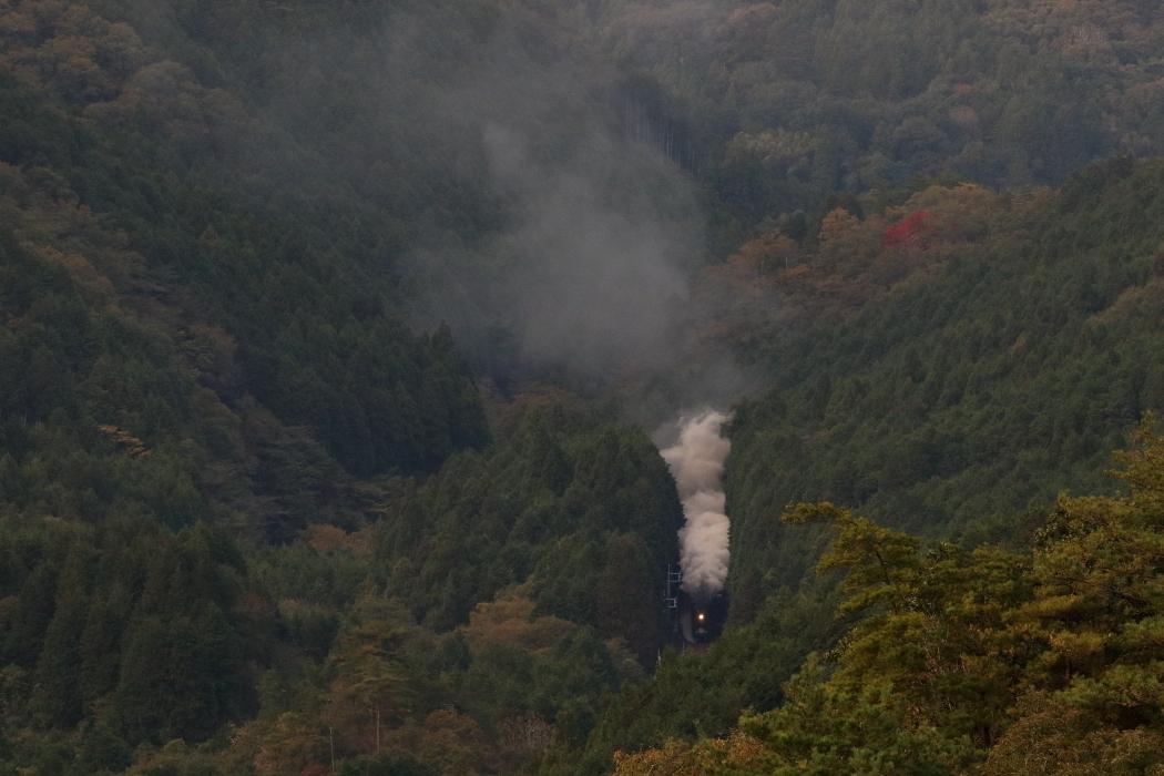 緑の森に光るヘッドライトと湧き上がる煙 - 2019年晩秋・山口線 -_b0190710_22311222.jpg