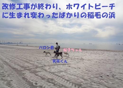 f0121712_22530238.jpg