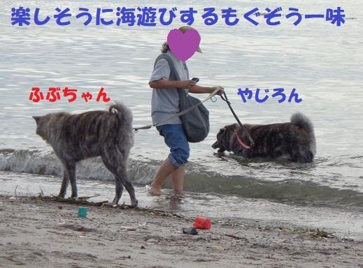 f0121712_23032663.jpg