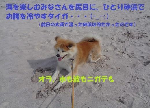 f0121712_23180658.jpg