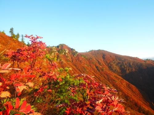 2019.11.2  平ケ岳登山!_a0236914_10365042.jpg