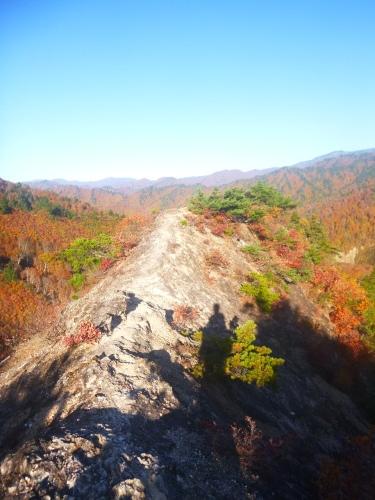 2019.11.2  平ケ岳登山!_a0236914_10392686.jpg