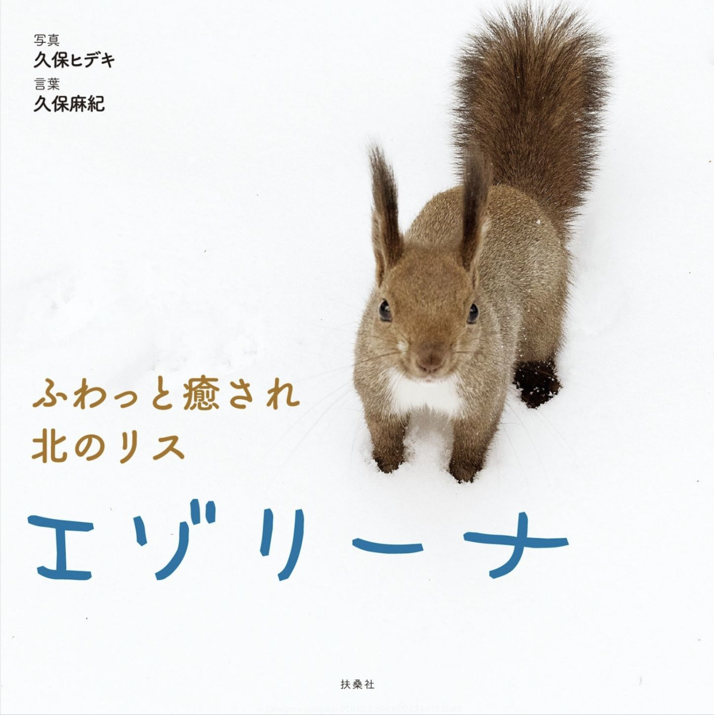 エゾリスと札幌の文化財_c0025115_22582729.jpg