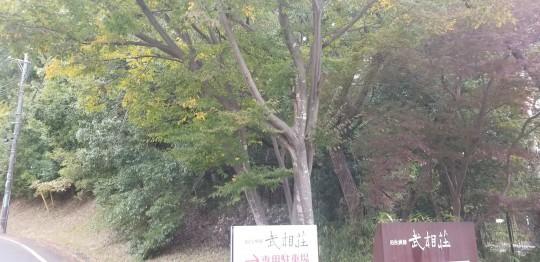 ♪食欲の秋満喫★女子会(武相荘)_d0162225_23420991.jpg