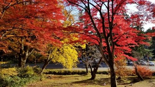 猪苗代町土津(はにつ)神社にて♪_f0165126_16045370.jpg
