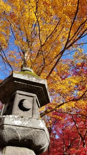 猪苗代町土津(はにつ)神社にて♪_f0165126_16070155.jpg