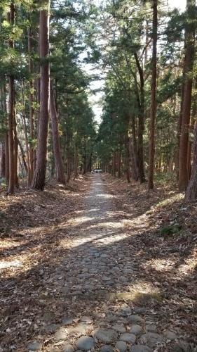 猪苗代町土津(はにつ)神社にて♪_f0165126_16073353.jpg