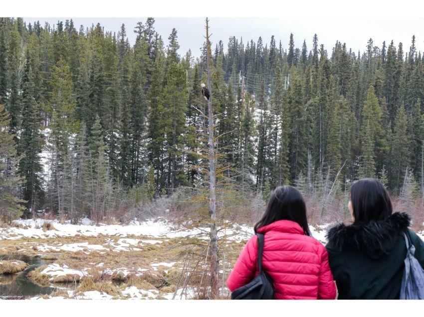 ホワイトホースの初冬大満喫、6泊7日イン・オンザレイクで親子オーロラの旅_d0112928_07351301.jpg