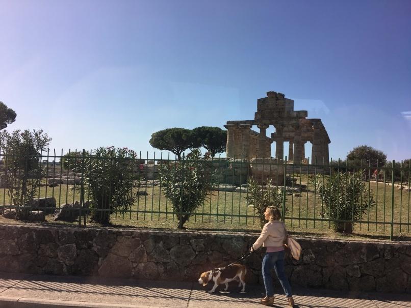 南イタリアユキキーナツアー5日目① チレントのモッツアレラ工房_d0041729_14310303.jpg