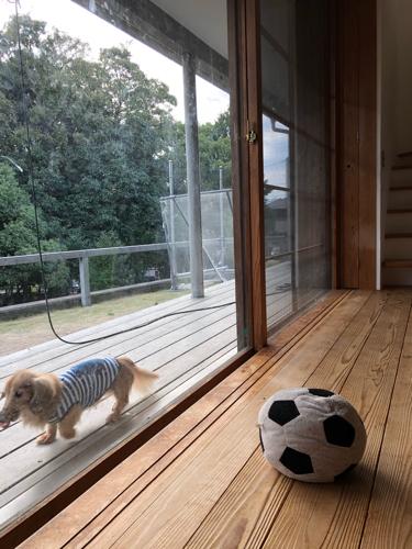 8年目のMIKURI house_e0021031_16200737.jpg