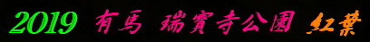a0068035_15265237.jpg