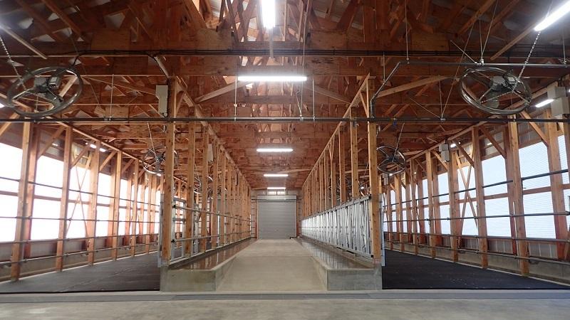 牛舎が完成しました_e0341538_14192114.jpg