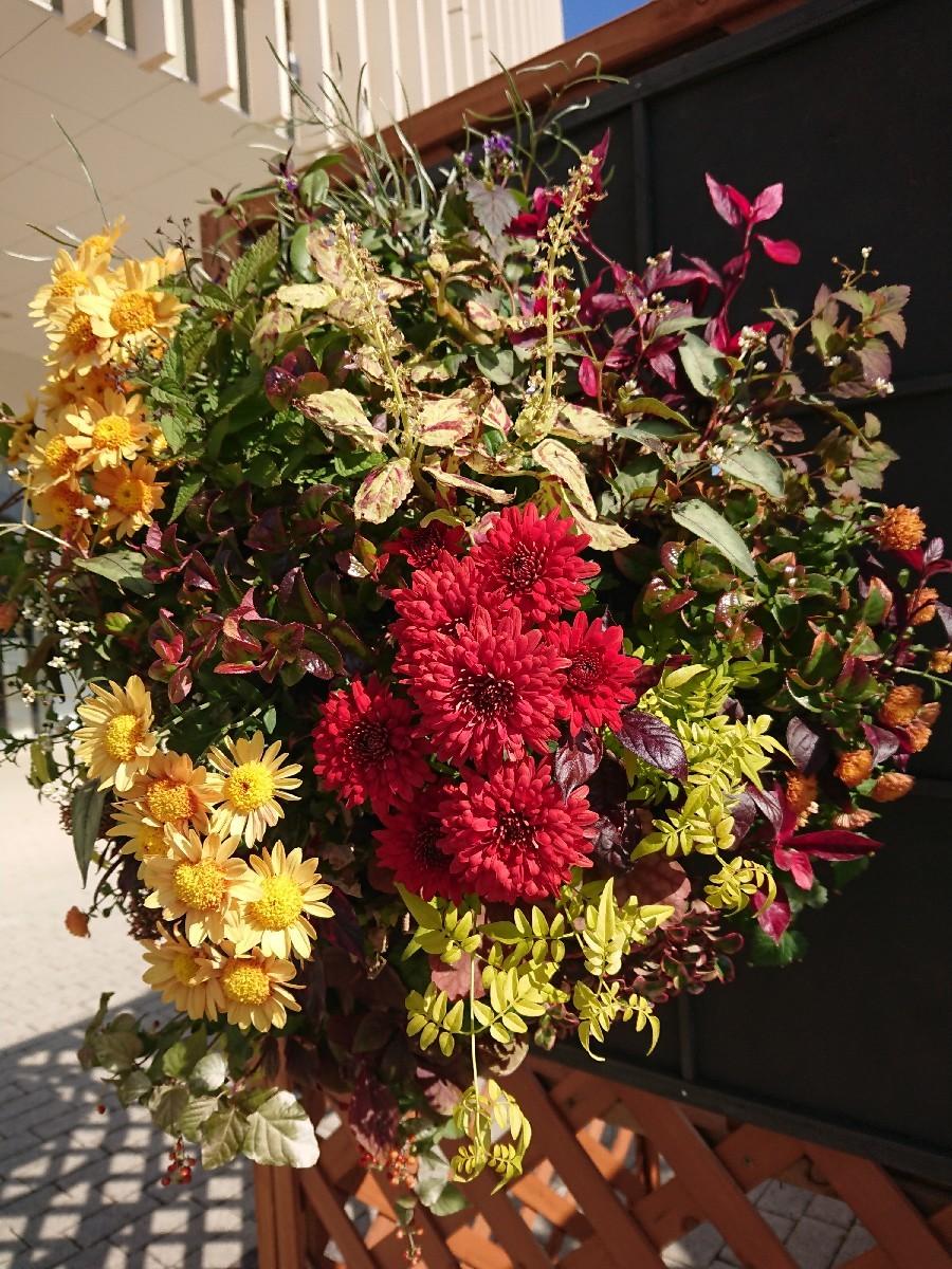 Autumn Marche @pepin(ぺパン)_f0323446_21202241.jpg