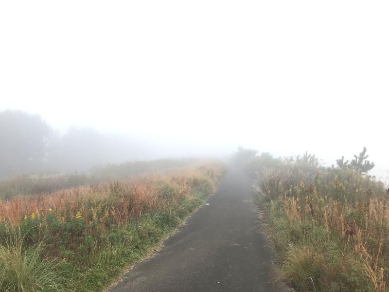 霧の中の風景 2019.11_f0169147_19504055.jpg