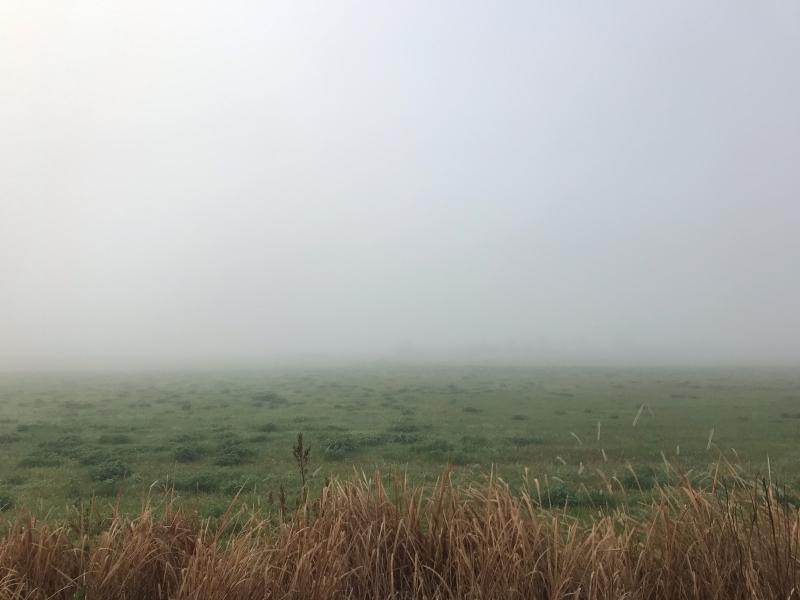 霧の中の風景 2019.11_f0169147_19574800.jpg