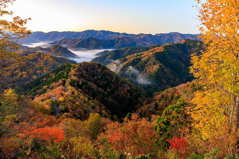 紅葉が彩る滋賀2019 小入谷の雲海と紅葉_f0155048_23411082.jpg
