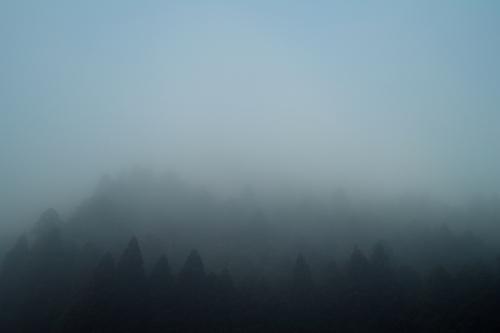長浜ローカルフォト・・・琵琶湖、コハクチョウ、空_d0005250_18412062.jpg