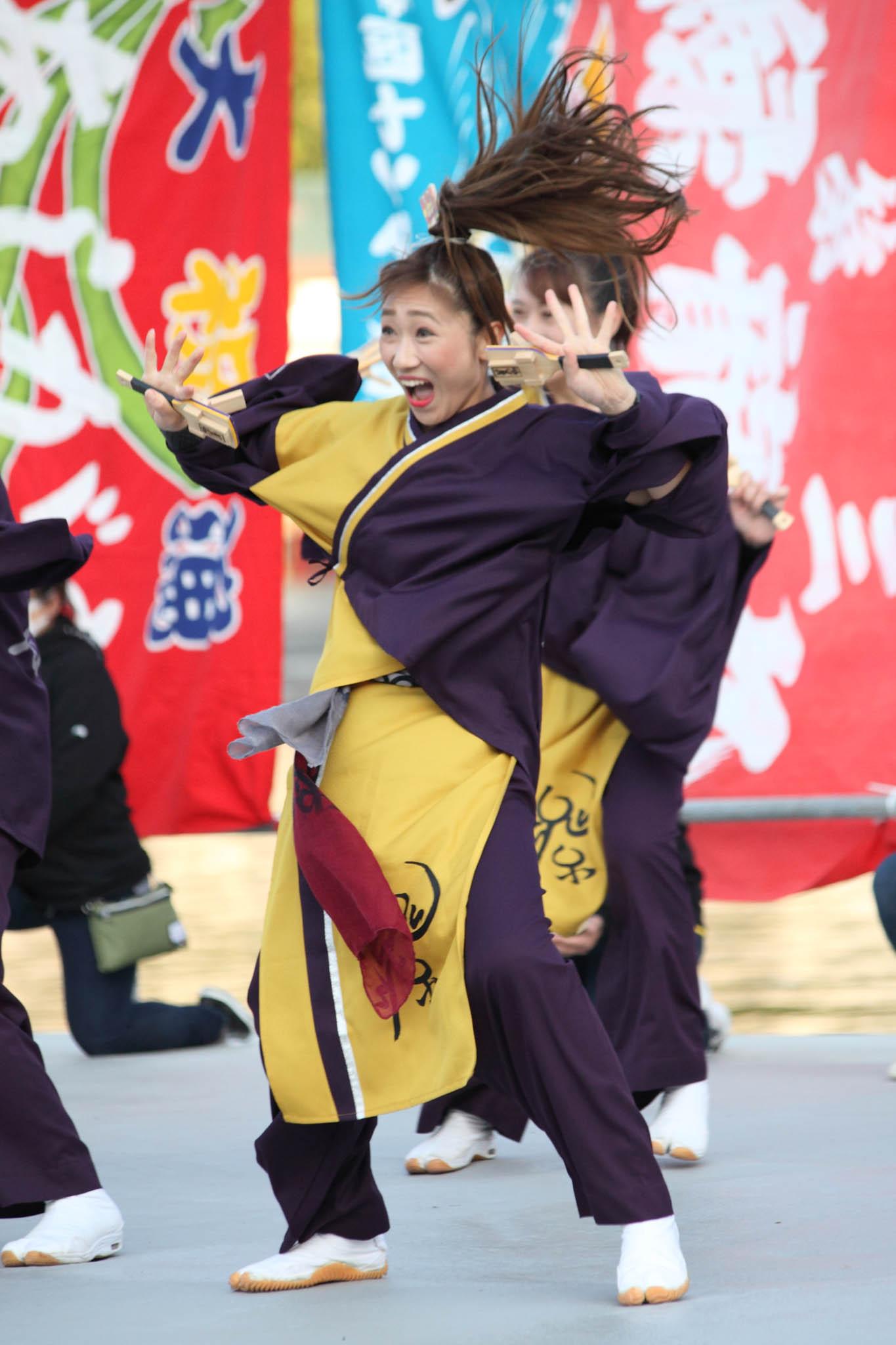 真鶴よさこい大漁フェスティバル2019【8】 _c0299360_12532250.jpg