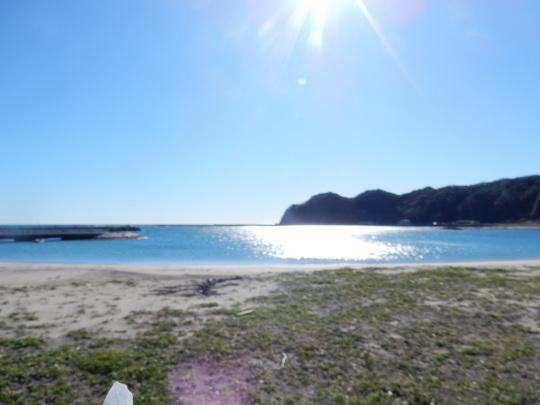 '19,11,13(水)興津の海散歩と小雪ちゃんは目が命!_f0060461_10320690.jpg