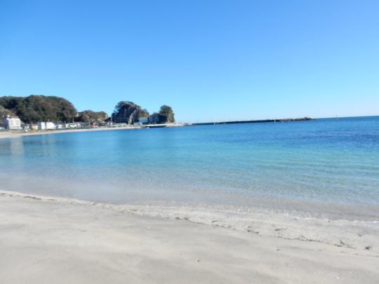 '19,11,13(水)興津の海散歩と小雪ちゃんは目が命!_f0060461_10330451.jpg