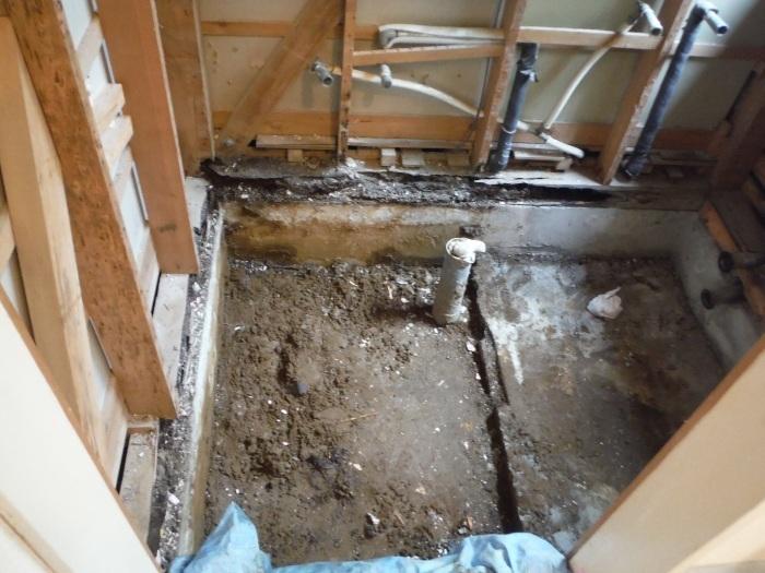 まとめてリフォーム ~ 浴室解体工事。_d0165368_05071163.jpg