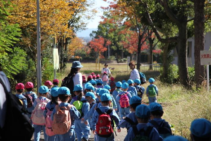 りんご・年少組 みかん狩りハイキング_b0277979_17453856.jpg