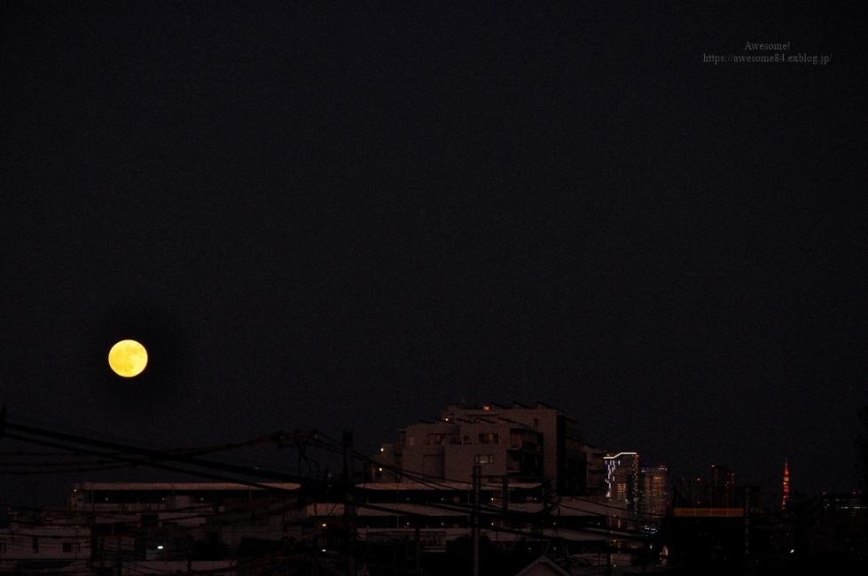 満月が綺麗だった昨夜の晩ご飯_e0359481_00121413.jpg