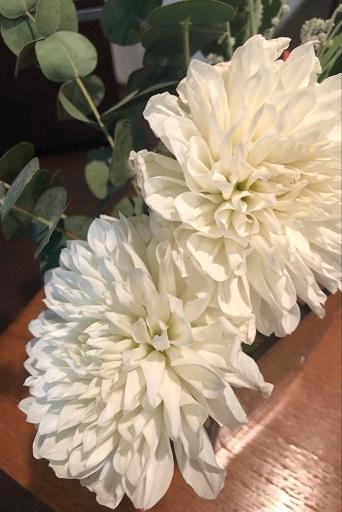 花が有る_f0202682_17161515.jpg