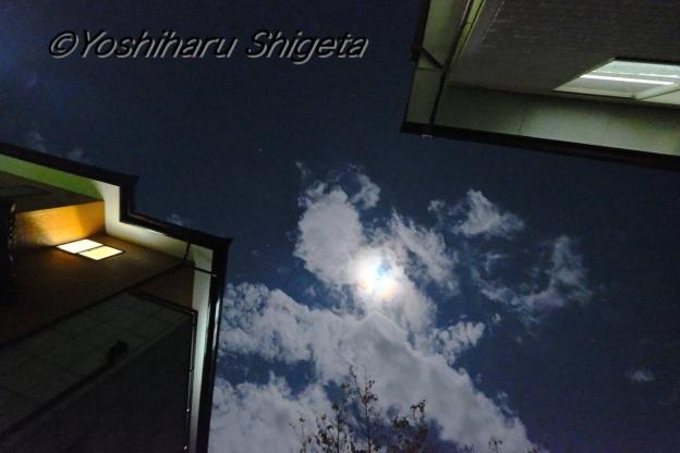 〜明かり〜_c0152400_00013276.jpg