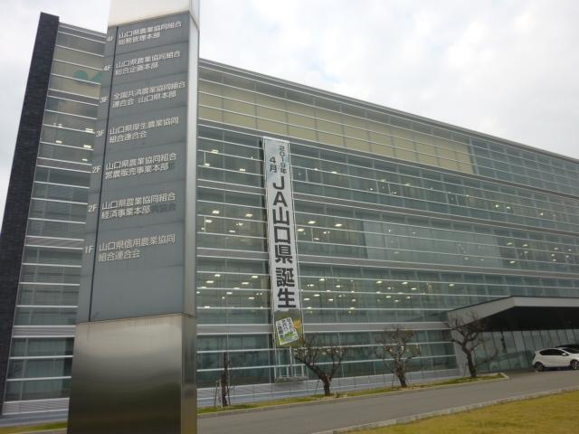 日大アメフト 前監督ら不起訴に 悪質タックル問題_b0398201_07164387.jpg