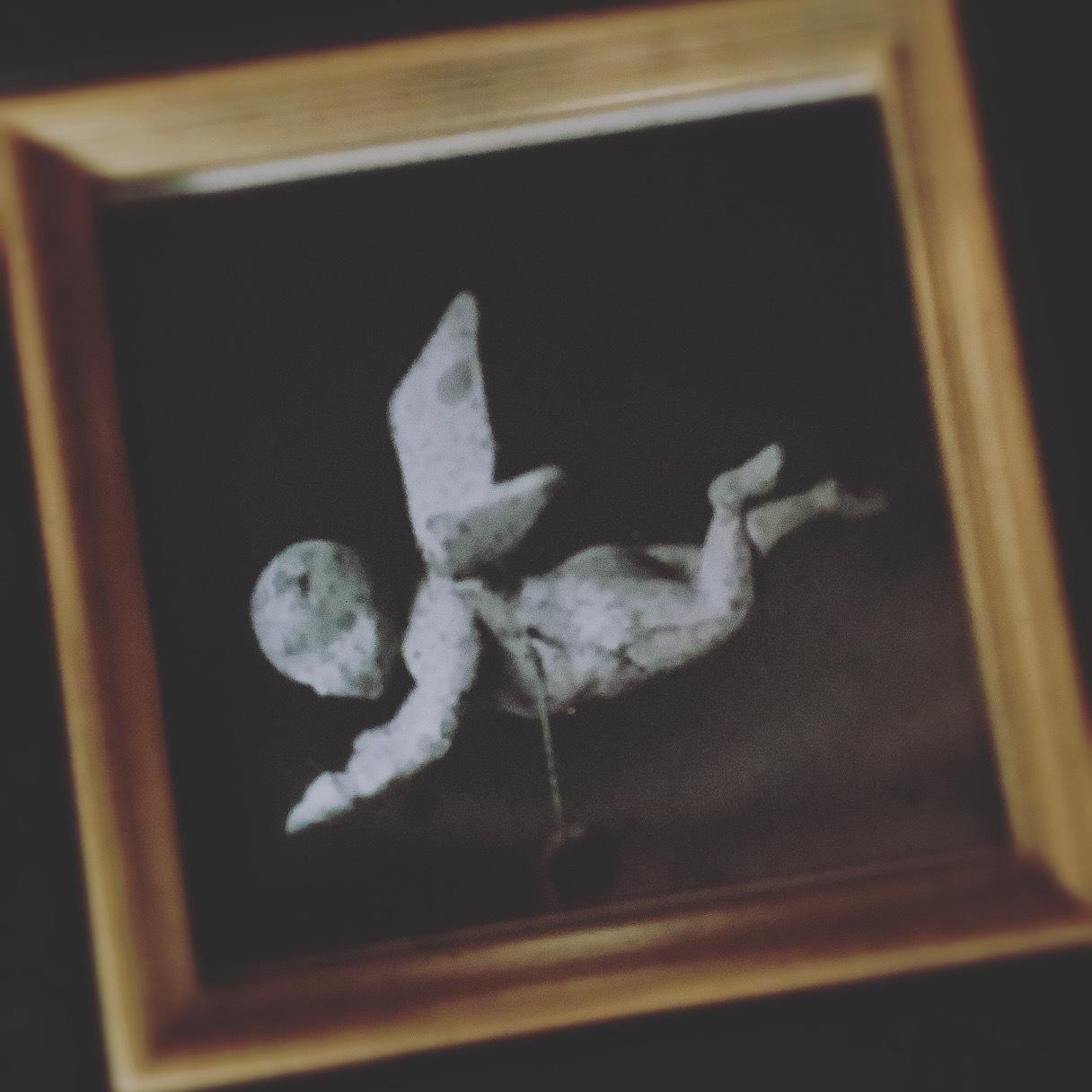 魂を映す永遠のアダージョ 私的撮影_c0203401_18330135.jpeg