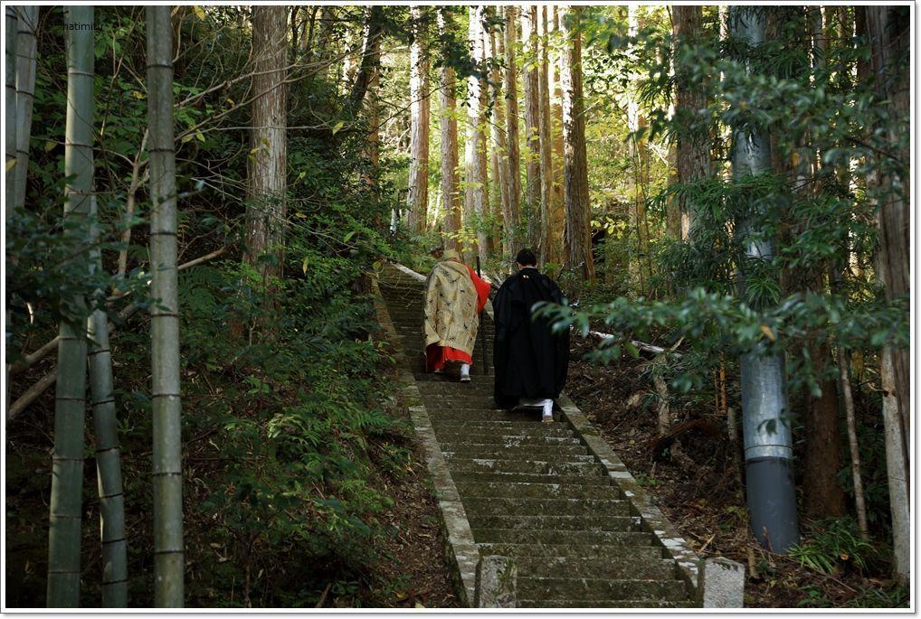 愛南町 正木の花取り踊り_a0057905_16422375.jpg