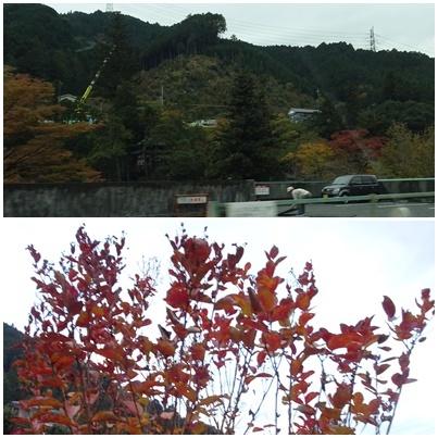 富士山 満月 畑 の備忘録_c0051105_22250267.jpg