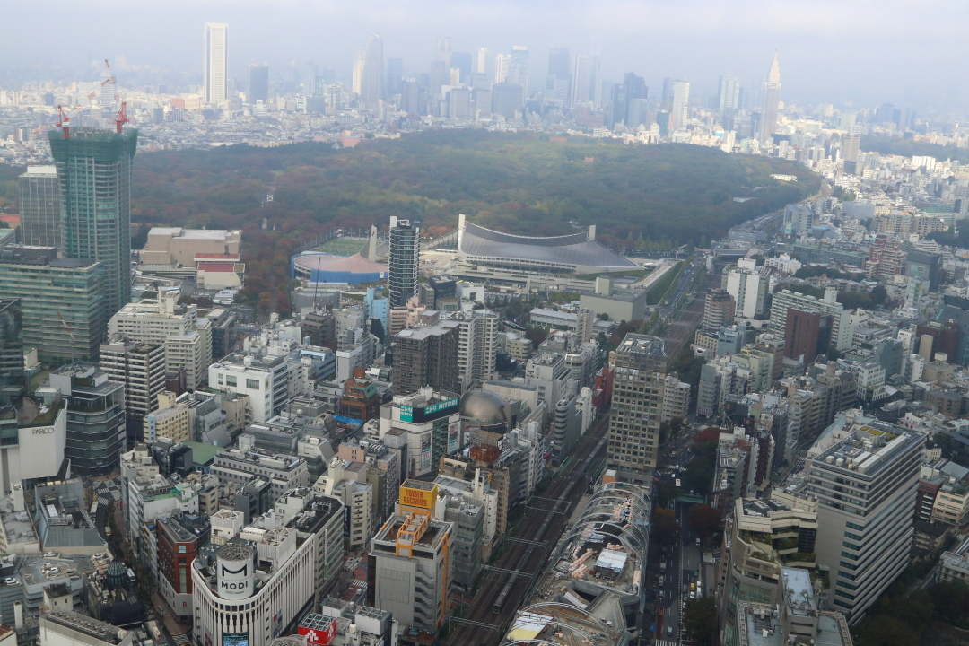 渋谷スクランブルスクエア_b0190710_21205491.jpg