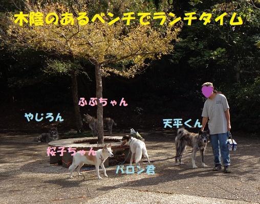 f0121712_00063883.jpg