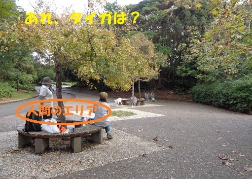 f0121712_00240797.jpg