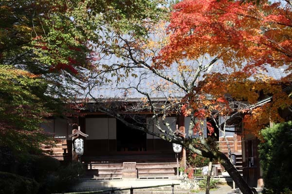 紅葉が始まった 常照寺_e0048413_21141210.jpg