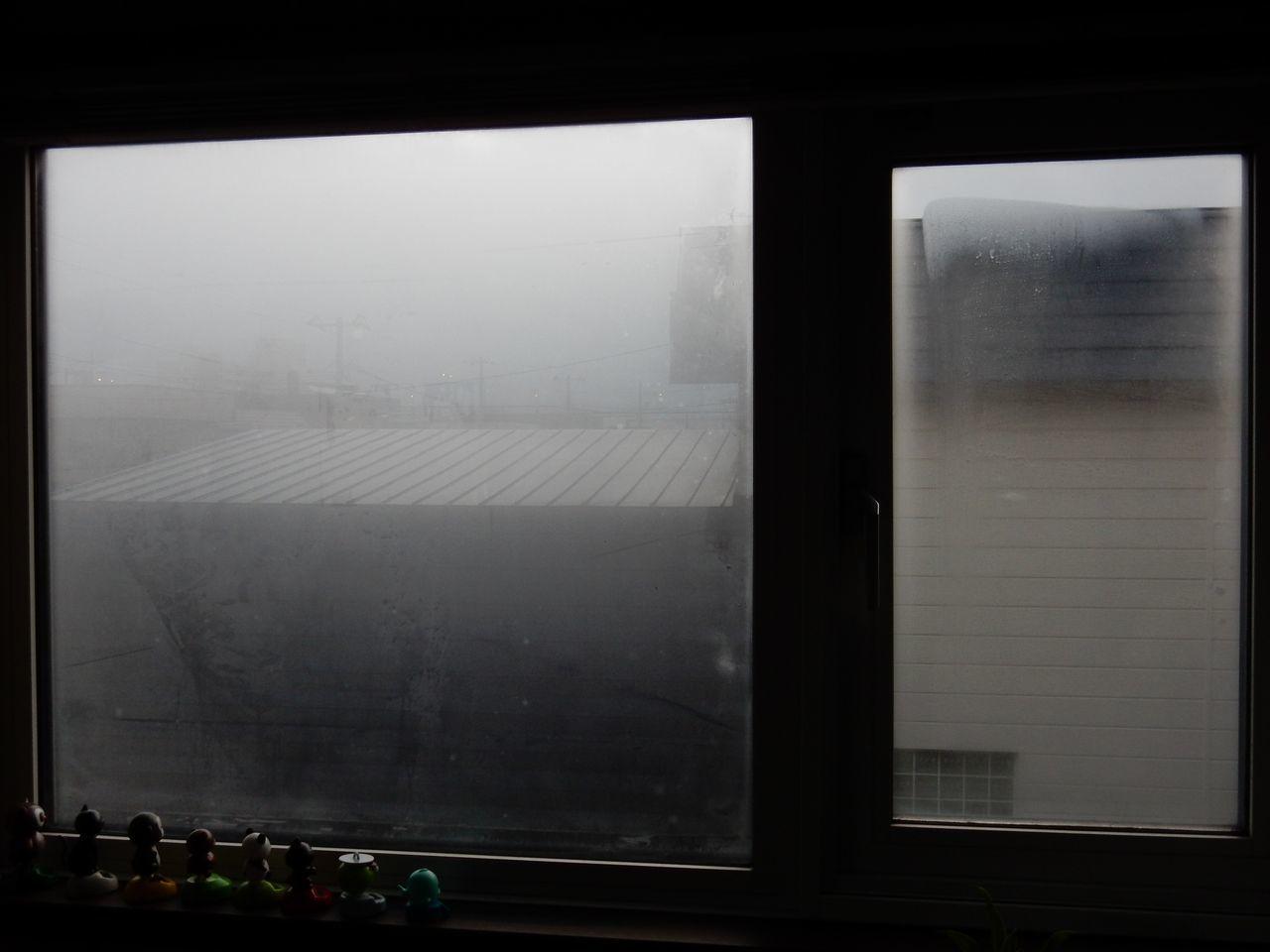 冬の嵐がやってきた_c0025115_21402824.jpg