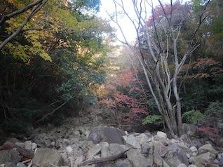御在所岳・本谷から鈴鹿の上高地へ(ヤブコギネット・オフ会)_c0359615_21524108.jpg