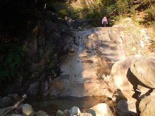 御在所岳・本谷から鈴鹿の上高地へ(ヤブコギネット・オフ会)_c0359615_21530603.jpg