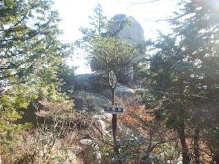 御在所岳・本谷から鈴鹿の上高地へ(ヤブコギネット・オフ会)_c0359615_21543273.jpg