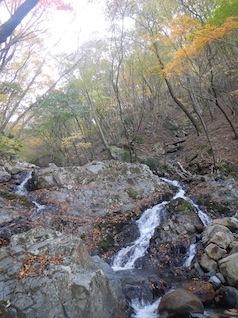 御在所岳・本谷から鈴鹿の上高地へ(ヤブコギネット・オフ会)_c0359615_21560722.jpg