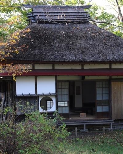 秋の軽井沢散策その3_c0366722_18273045.jpeg