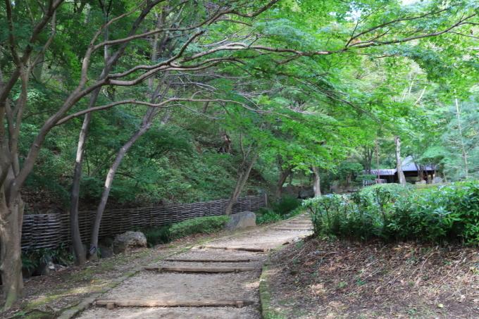【神奈川県立 七沢森林公園】_f0348831_00060534.jpg