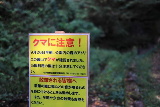 【神奈川県立 七沢森林公園】_f0348831_00060997.jpg